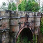 The Mystery Of The Dog Suicide Bridge: 600 Dogs Jump Off From Haunted Bridge In Scotland.