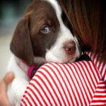This Is Why You Need To Stop Hugging Your Dog: Study Finds.
