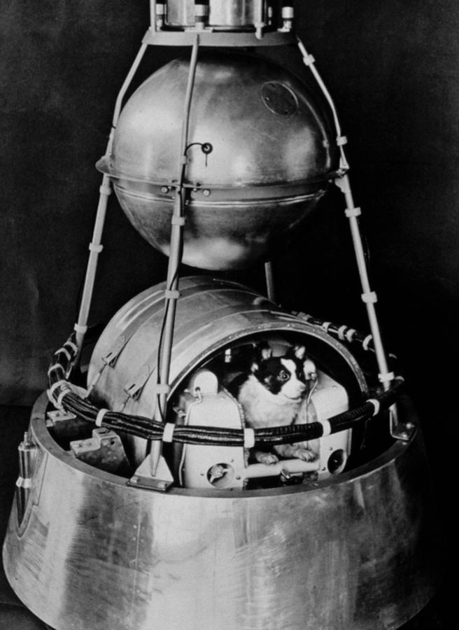 Sputnik 2 prototype