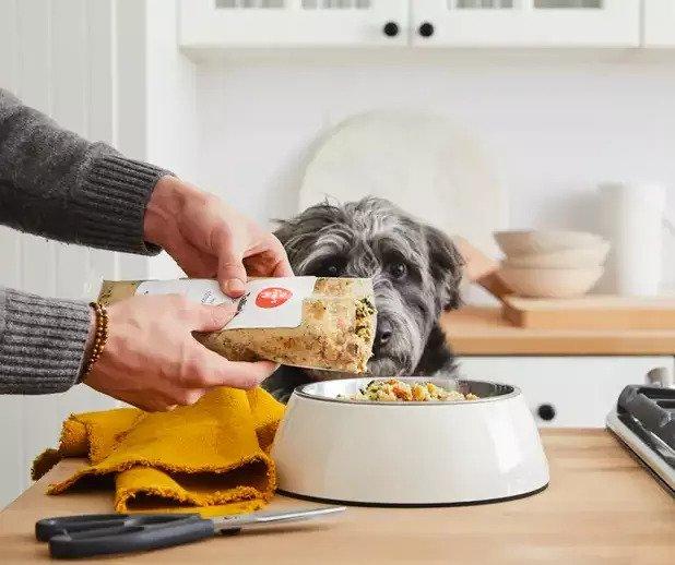 The Farmer's Dog-dog food